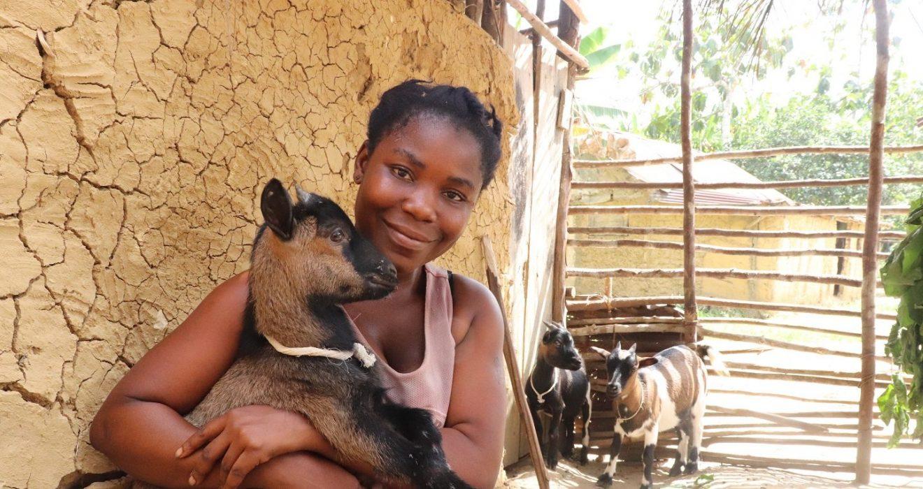 Goat rearing in Liberia