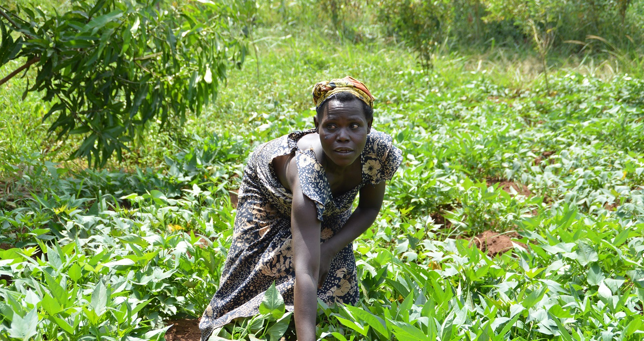 Woman in a field in Uganda.