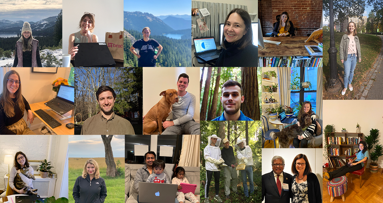 A collage of BRAC USA staff working from home